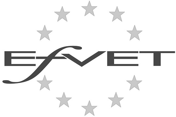 European Forum of Technical and Vocational Education and Training (EfVET)