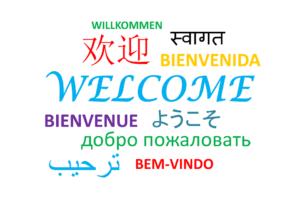 language diversity